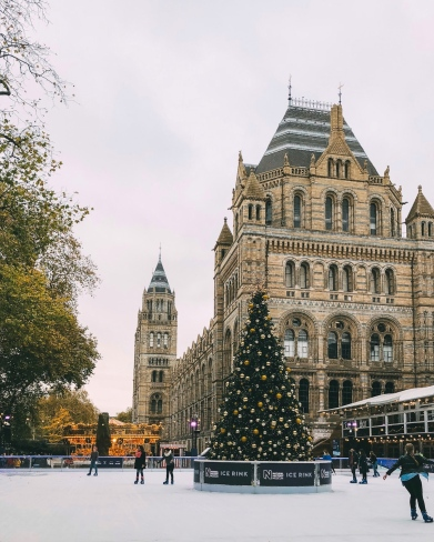 Ice skating at the Natural History Museum, London